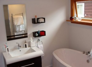 bathroom renovationss